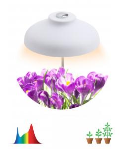 ЭРА Штыковой светильник полного спектра FITO-12W-FLED (20/800)
