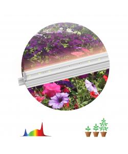 ЭРА Линейные светильник полного спектра FITO-18W-T5-Ra90 (30/840)
