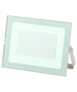 LPR-031-0-65K-050 ЭРА Прожектор светодиодный уличный 50Вт 4000Лм 6500К 183x131x36 белый (30/540)