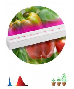 ЭРА Линейный светильник красно-синего спектраFITO-16W-Т5-N (30/840)