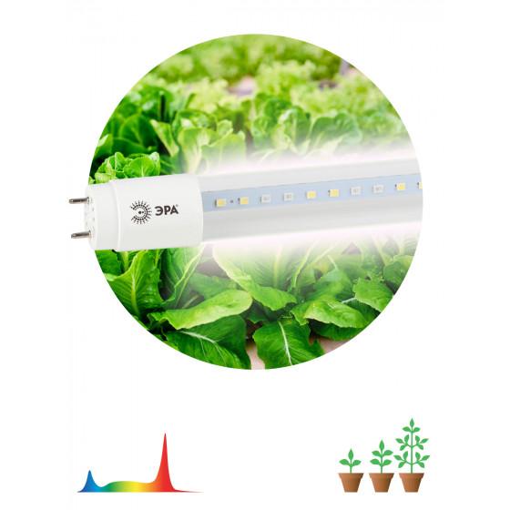 ЭРА Лампа полного спектра FITO-18W-Ra90-Т8-G13-NL (5/25/600)