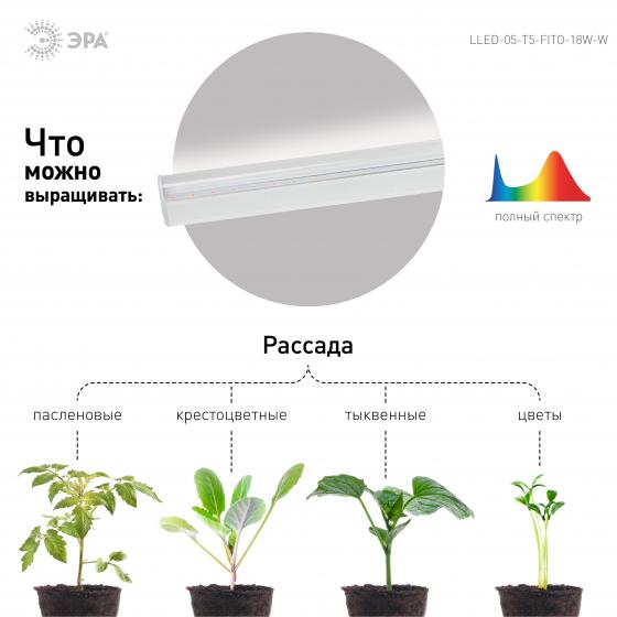 Светильник для растений, фитолампа светодиодная линейная ЭРА LLED-05-T5-FITO-18W-W полного спектра 18 Вт