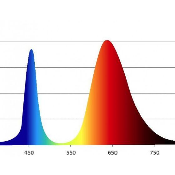 Фитолампа для растений светодиодная ЭРА FITO-14W-RB-E27-K красно-синего спектра 14 Вт Е27