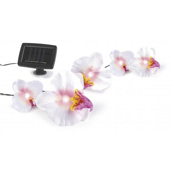 SL-PL420-FOD12 ЭРА Садовый светильник на солнечной батарее, пластик, цветной, длина гирлянды - 420 с