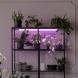 Светильник для растений, фитолампа светодиодная линейная ЭРА LLED-05-T5-FITO-9W-W полного спектра 9 Вт